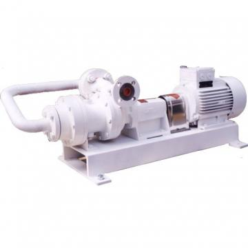 DAIKIN W-V8A1RX-20 V8 Series Piston Pump